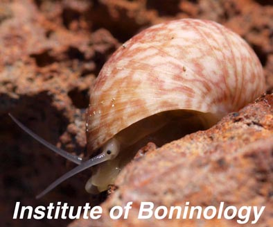 Institute of Boninology